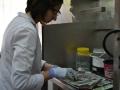 20- Sala de macroscopía